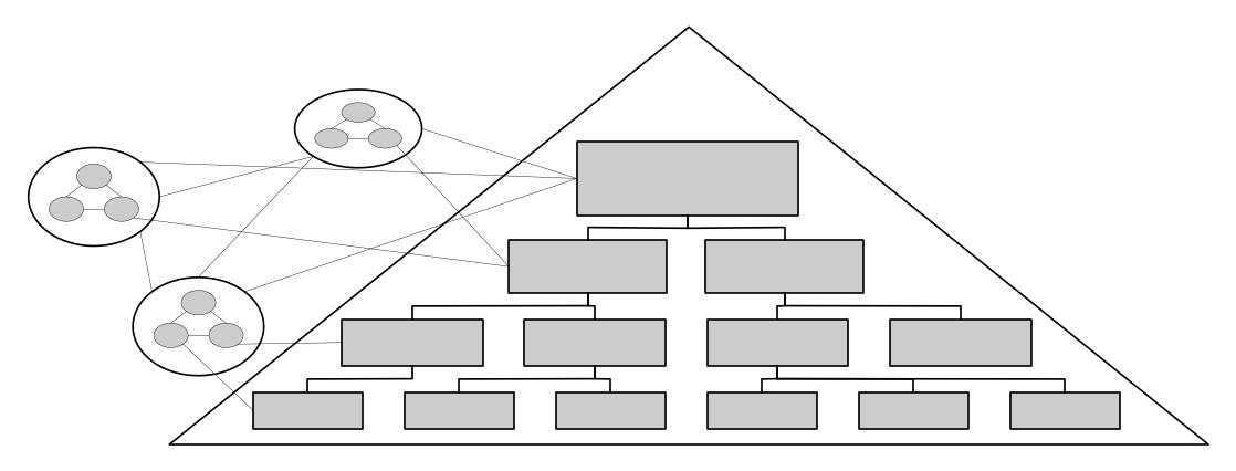 Grafik: Rollen- und Linienorganisation